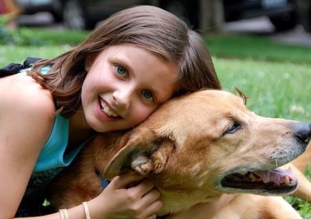 Beneficios de tener un perro en casa