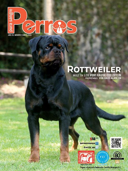 Revista Perros Pura Sangre Rottweiler