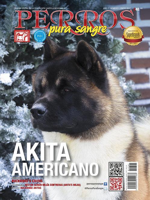 Revista Perros Pura Sangre Akita Americano