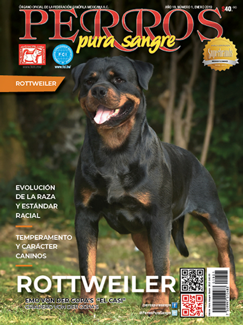 Revista Perros Pura Sangre de Rottweiler