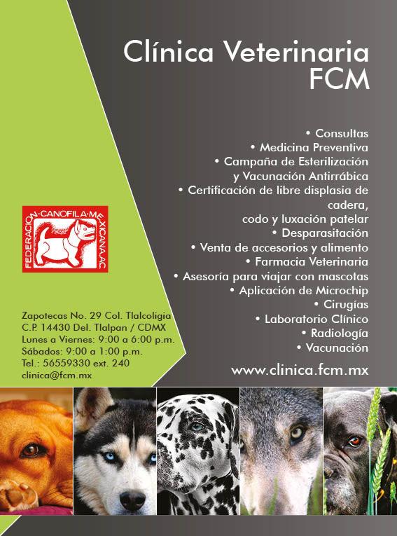clinica.jpg