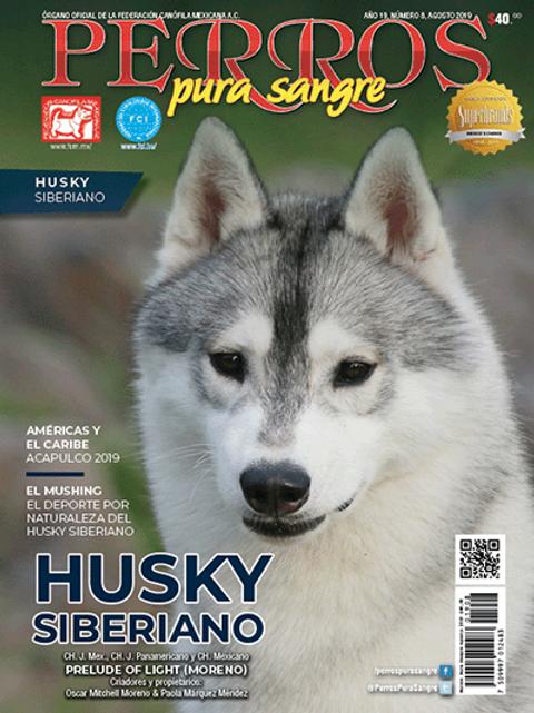 Revista Perros Pura Sangre Husky Siberiano