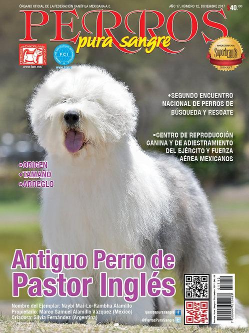 Revista Perros Pura Sangre Antiguo Perro de Pastor Inglés