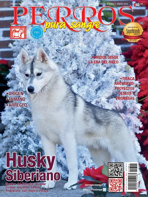 Revista Perros Pura Sangre de Husky Siberiano