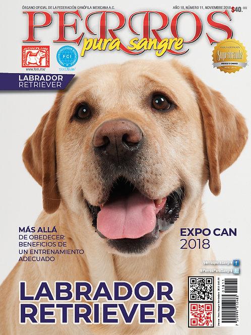 Revista Perros Pura Sangre Labrador Retriever