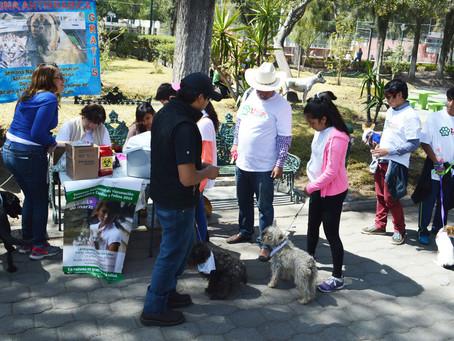MÉXICO ESTÁ LIBRE DE RABIA HUMANA TRANSMITIDA POR PERROS