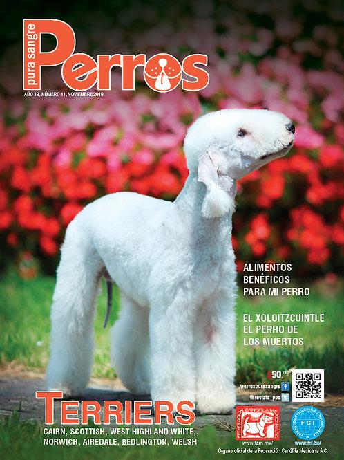 Revista Perros Pura Sangre Terriers