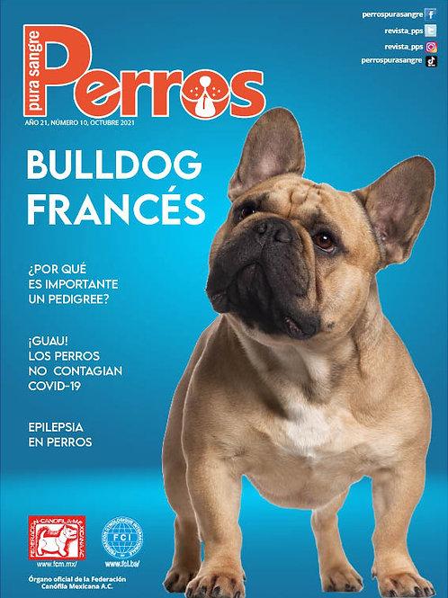 Revista Perros Pura Sangre Bulldog Francés