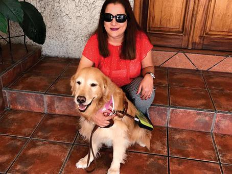 Sol y Maizy, su perra guía: la apasionante y ejemplar vida de una mujer que brilla con su propia luz