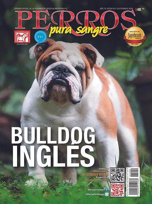 Revista Perros Pura Sangre Bulldog Inglés