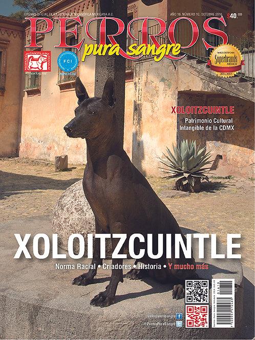 Revista Perros Pura Sangre Xoloitzcuintle