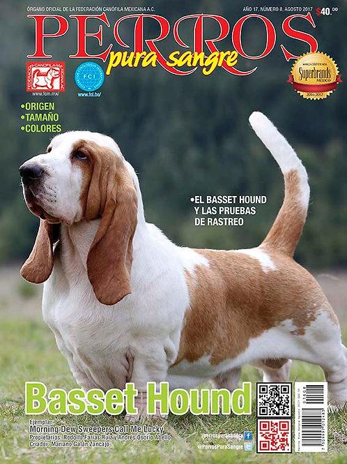 Revista Perros Pura Sangre Basset Hound
