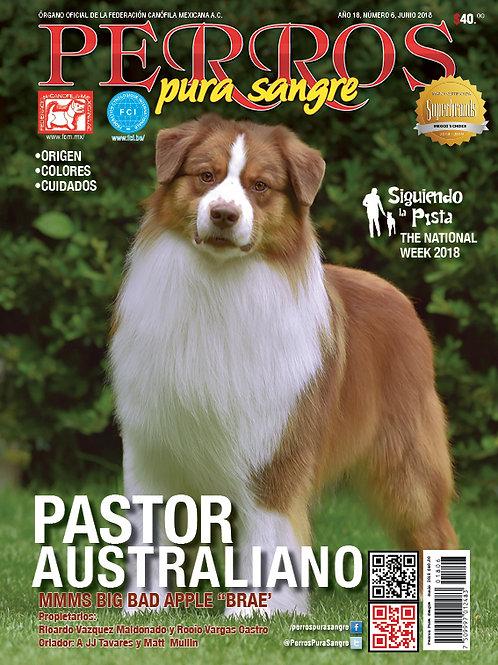 Revista Perros Pura Sangre Pastor Australiano