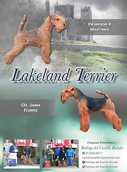 lakeland.jpg