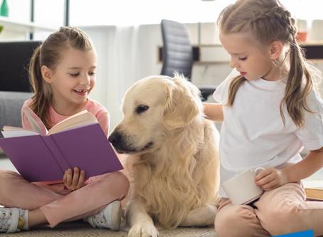 El poder de las mascotas y su impacto en la salud humana