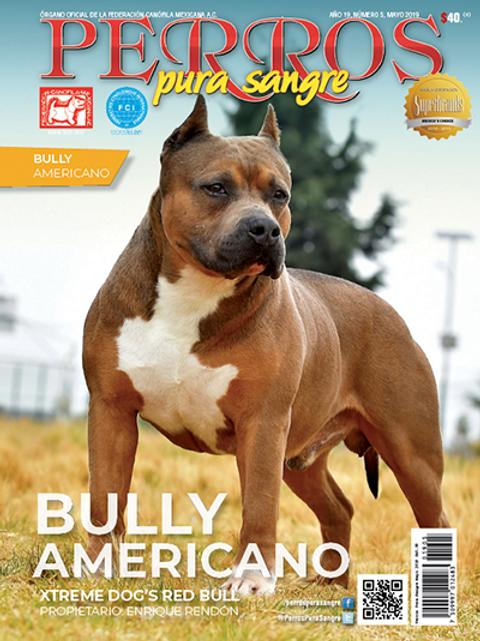 Revista Perros Pura Sangre Bully Americano