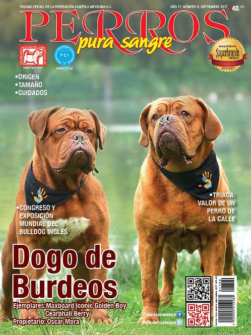 Revista Perros Pura Sangre Dogo de Burdeos