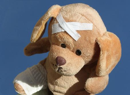Primeros auxilios para tu cachorro