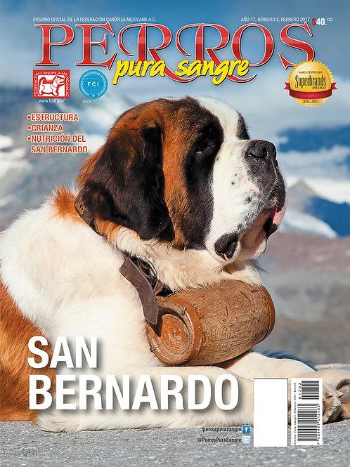 Revista Perros Pura Sangre San Bernardo