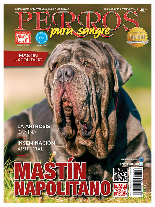 Revista Perros Pura Sangre Mastín Napolitano