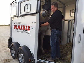 ULMERLE_Pferde_Service.jpg