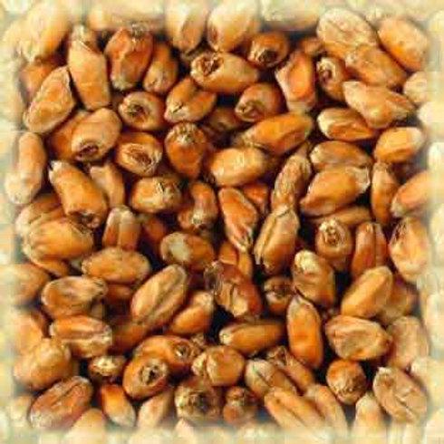 Malta de trigo munich EBC15 3kg