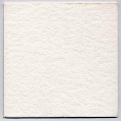 Placa carton de filtro 40x40 V16 Brillantadora
