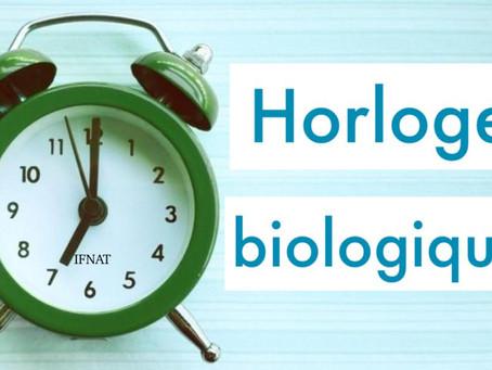 Qu'est ce que l'horloge biologique ?