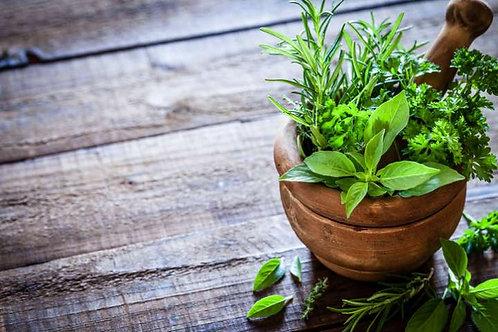 Les Plantes au Quotidien. Connaitre et appliquer la phytothérapie.