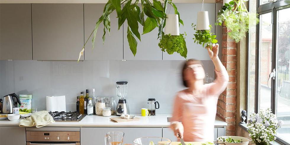 Cours de Cuisine avec les Plantes