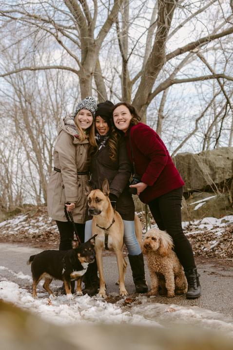 Toronto Dog Photographers Come Together