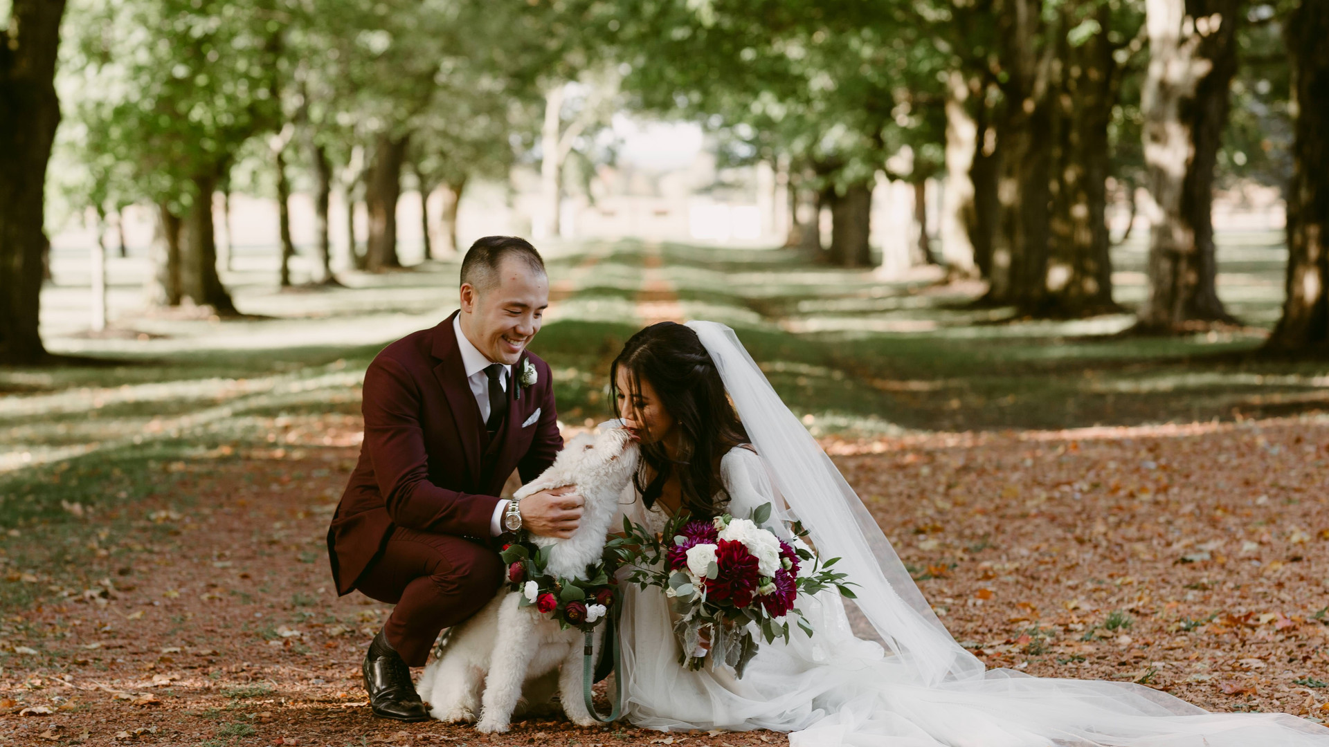 BelcroftEstateWedding_LoversWithPuppers_