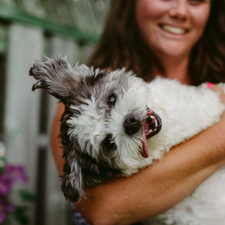 How to Have a Successful Dog Photoshoot In Your Backyard | Toronto Pet Photographer