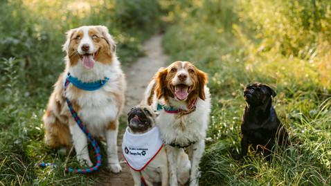 Mom & Daughter Dog Session | Toronto Pet Photography | Danica Oliva