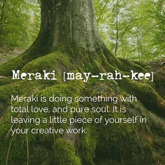 What is Meraki Biology?