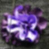 Signe distinctif FigeacVoix