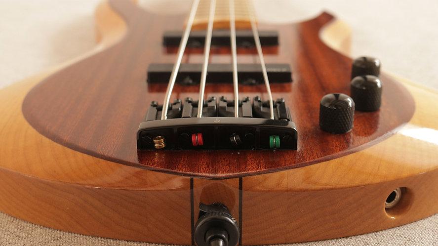 Spring Bass Guitar