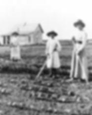 homesteading.jpg