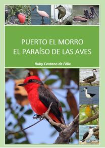Puerto el Morro Birds