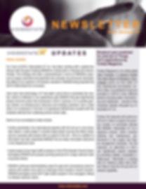 VIS Newsletter - January 2019.jpg