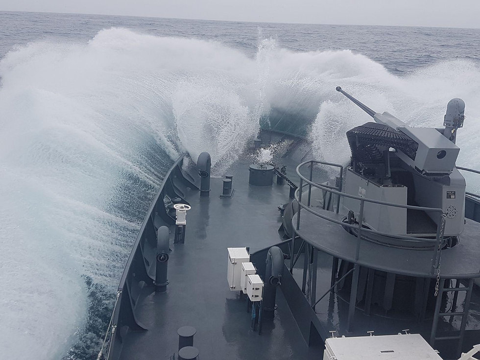 Naval RCWS 30 MM.JPG