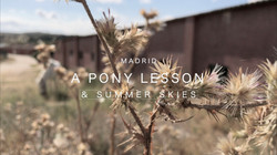 Pony Lesson
