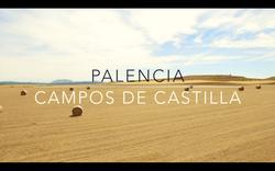 Campos de Castilla (PALENCIA)