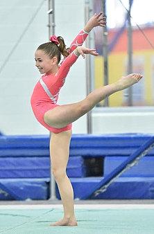 Md Usa Gymnastics Team Maryland 2016 National Judges Cup