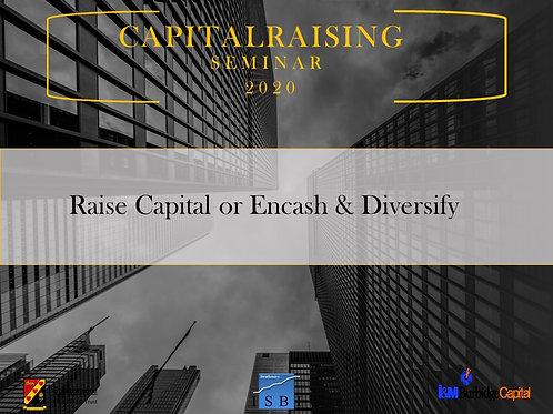 Raise Capital or Encash & Diversify