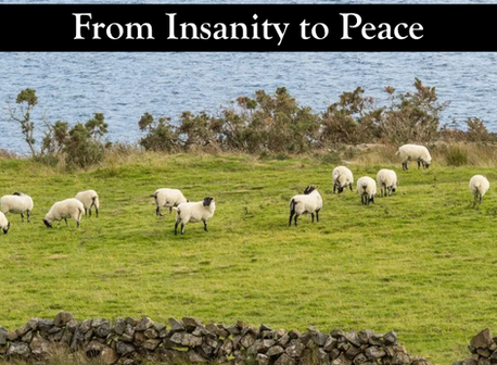 From Insanity to Peace