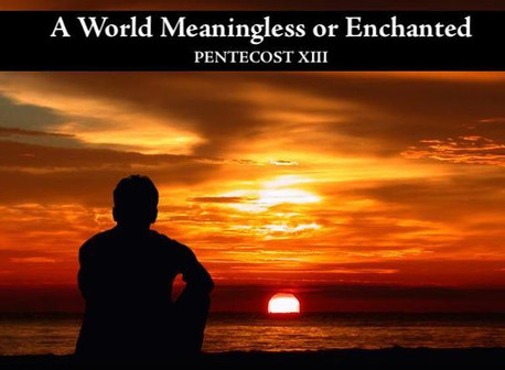 A World Meaningless or Enchanted