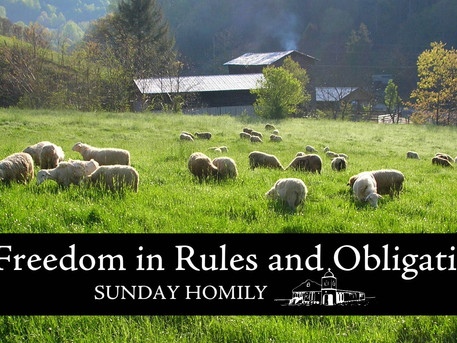 Freedom in Rules and Obligation