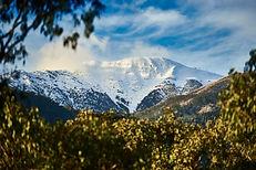 A-snowy-Mt-Buller-peaking-through-the-le