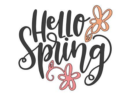 FUNDRAISER hello spring ($40)
